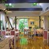 レストラン花の館 パラディ北野 - メイン写真: