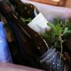 ラ・ベットラ・ダ・オチアイ ナゴヤ - 内観写真:内観 ワイン