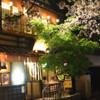 はし田屋 - 内観写真:お花見は最高の立地です。