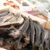麻布十番 さくら 鳥居坂 - 料理写真:築地で絶えず美味しい食材を探し回る店主。