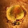 チング - 料理写真:こだわりの濃厚なチーズがおいしい☆豚もちチーズ 1050円