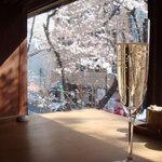 【東京都内】店内から桜が見える!お花見に最適なレストラン&カフェ 6選