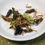 【昆虫食】美味しい昆虫料理10選