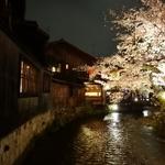 【京都】京都の花見に+α☆夜桜ディナーを楽しめるレストラン