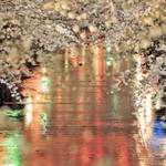 目黒川/中目黒で店内からお花見を楽しめるお店
