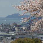 【福岡~山口~広島】西日本お花見グルメ前線