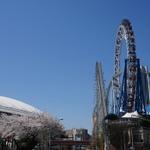 東京ドームあたりでランチデート