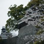 熊本旅グルメツアー