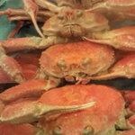 【石川県】蟹をいただけるお店11選【加能・香箱】※追記あり