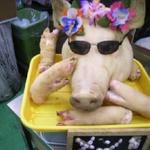 九州では食べたことがないとんこつラーメン評論家がすすめる関東とんこつラーメン