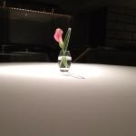[東京・愛知・京都] 新進気鋭の女性職人