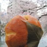 東京の桜の開花が発表になりました お口の中にも桜のパン咲かせましょう