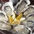 牡蠣屋バル - メイン写真: