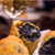 ソル セビージャ - 料理写真:開けてビックリ真黒コロッケ