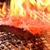 炭火焼鳥とりっこ - メイン写真: