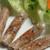 サイゴン・レストラン - 料理写真:アミアミ揚げ春巻き・Chả giò rế