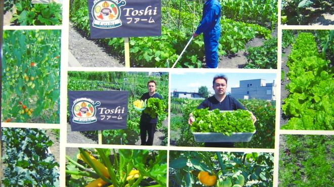 Toshi - 料理写真:☆Toshiファームの様子!