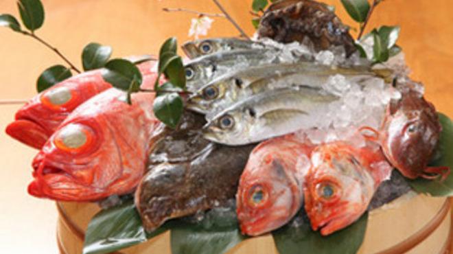 魚國 - 料理写真:相模湾の鮮魚