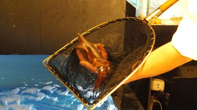神楽 - 料理写真:水槽から泳ぎイカを!