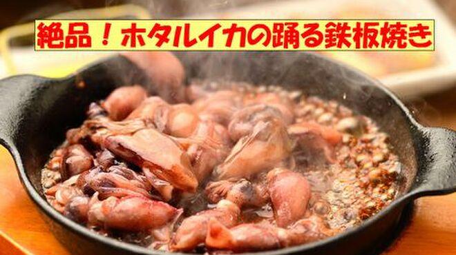 龍のおとし子 - メイン写真: