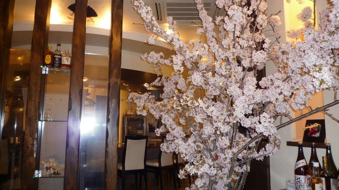 すてーき西岡 - 内観写真:季節の花で店内を演出