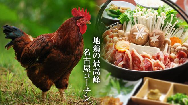 すみれ - メイン写真: