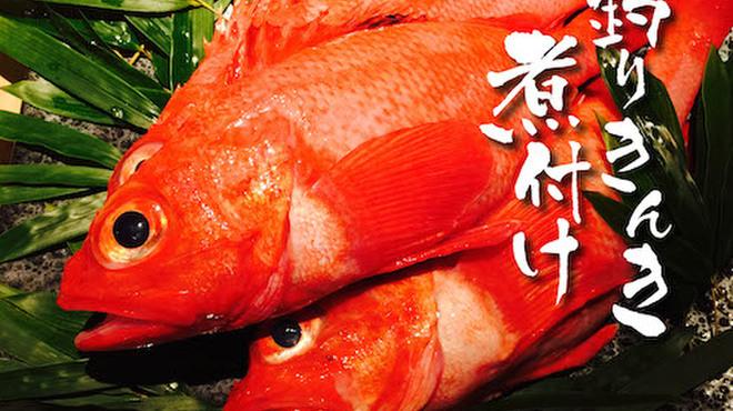赤坂あじさい - メイン写真: