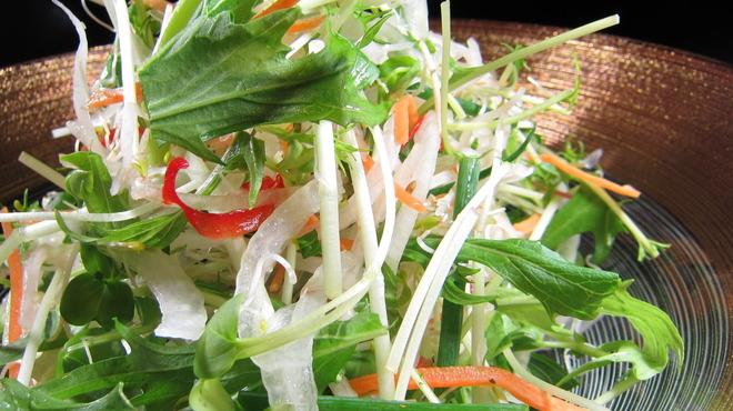 雷門 き介 - 料理写真:人気のき介サラダ