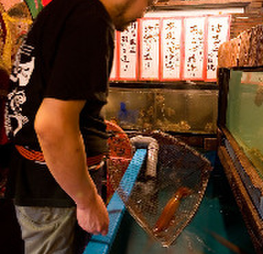海鮮居酒屋 洗濯船 - メイン写真: