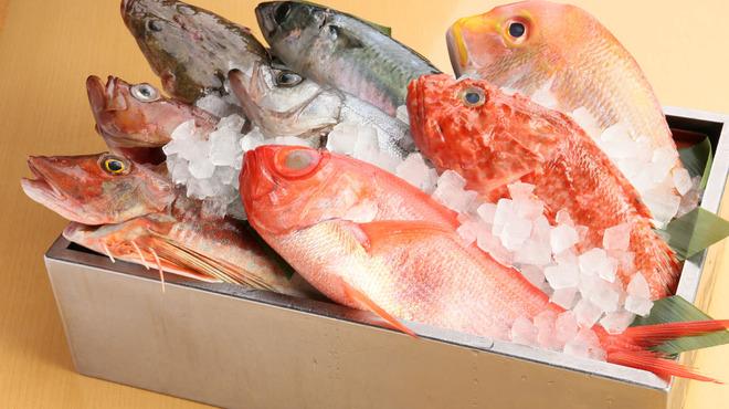 跳魚 - 料理写真:築地直送!新鮮煮魚、焼き魚