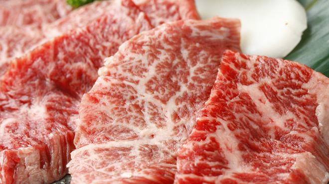 炭火焼肉 食道園 - 料理写真:特撰ハラミ
