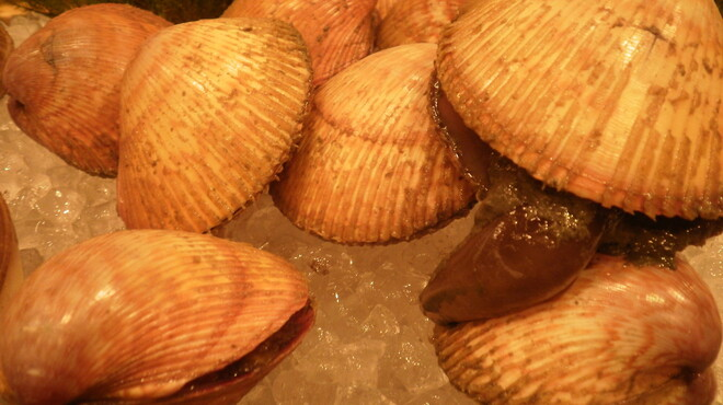 寿司勝 - 料理写真:生とり貝 この時期お勧めの貝です。