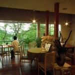 Cafe Chiffon  -