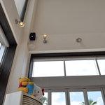 ヴォーノ - 店舗内は高い天井と外光の取り入れが特徴