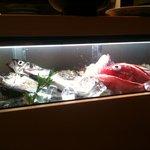 金八 - 料理長が朝、築地で仕入れた天然物の魚さん達