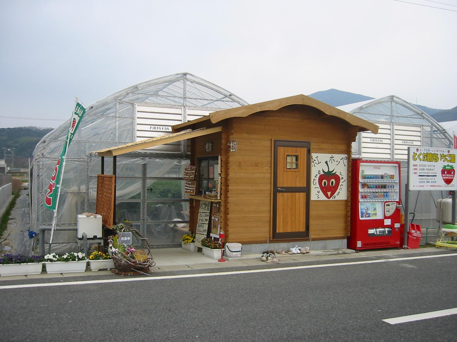 徳田いちご園