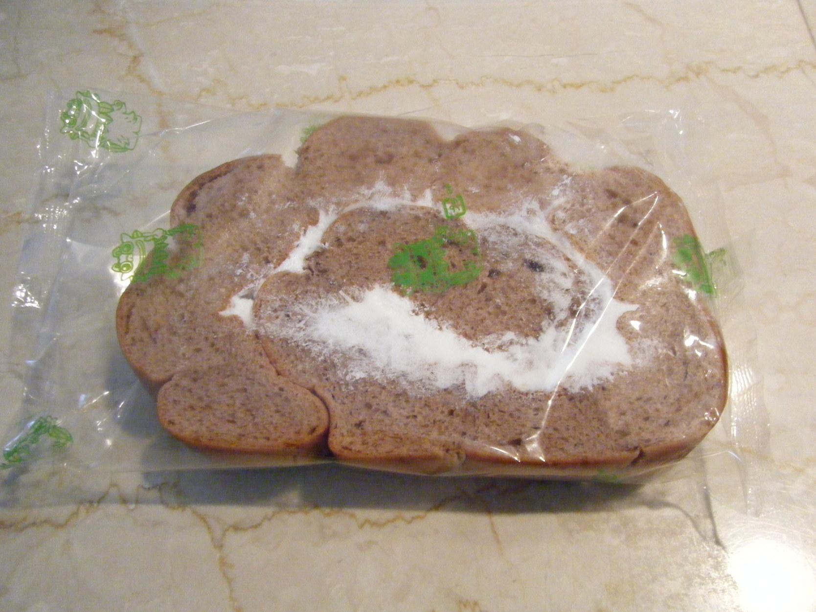 富士製菓製パン工場