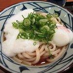 丸亀製麺 - とろ玉うどん大(温)\480