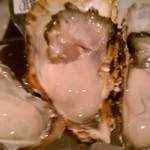 COVO - 生牡蠣