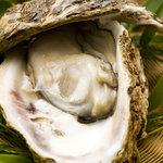 炭平 - 「岩ガキ」夏の風物詩、豊かな磯からは多くの美食が生まれる。