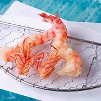 立川の和食。おすすめレストラン10店