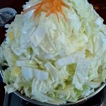 12101003 - メガ白菜2
