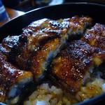 うな川 - 鰻丼(並)