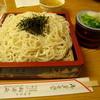 福原 松濤庵 - 料理写真:大ざる 700円