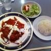 サラドネルケバブ - 料理写真:ハンバーグプレート(ラム)