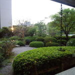 雲海 - 店内から望む中庭。手入れが行き届いています。