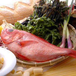 魚は相模湾で獲れる地魚を毎日仕入れております