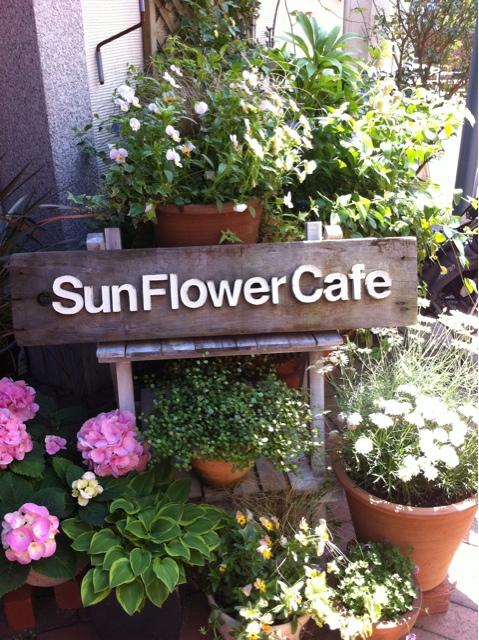 サンフラワー カフェ