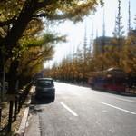 フィアットカフェ - 神宮外苑の銀杏並木