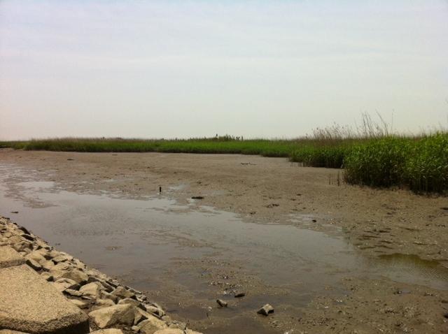 天然温泉なべた川